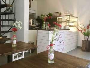 Originelle Restaurants: Die Knödel-Manufaktur in Wien. Der Parktiger Reisetipp!